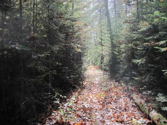 Exploring new trails - October