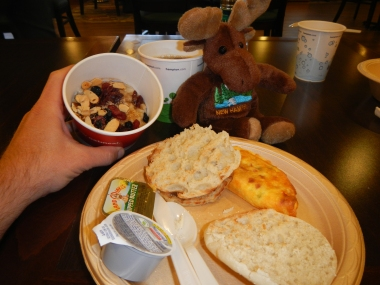 NH Moose enjoys breakfast