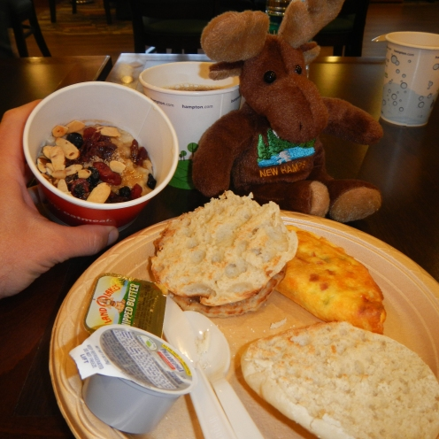 NH Moose enjoys breakfast