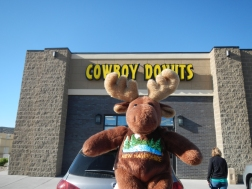 NH Moose finds Cowboy Donuts