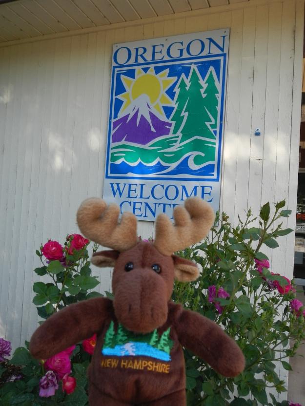 NH Moose enters Oregon!