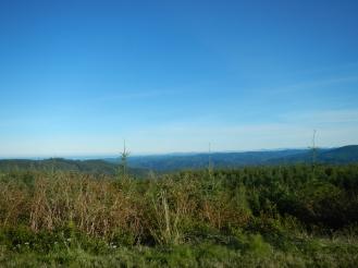 Some nice views