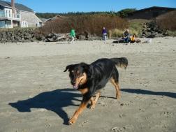 beach day 024