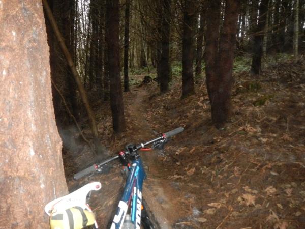 Nice trails